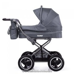 Kоляска прогулочная TILLY Family T-181 Grey